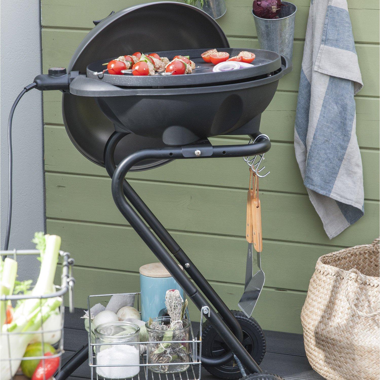 Barbecue Electrique Leroy Merlin