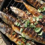 Barbecue poisson