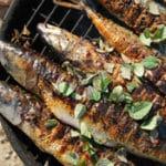 Recette maquereau barbecue