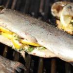 Recette poisson barbecue